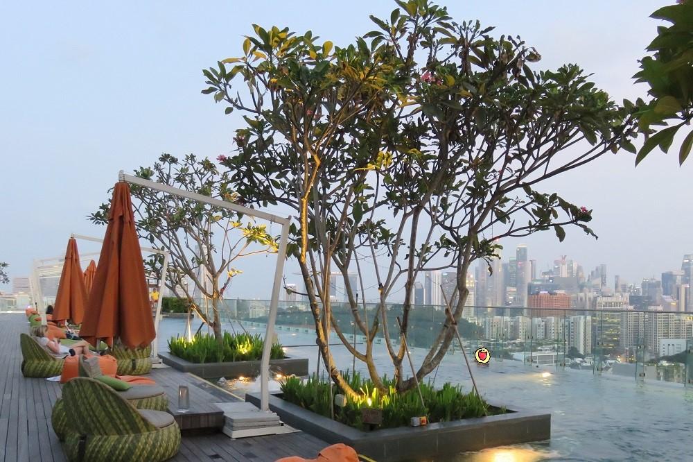 シンガポール2016-Hotel Jenプール1