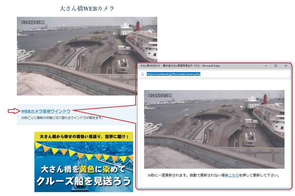 大さん橋ライブカメラ